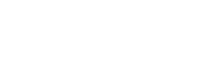 Brain Injury Association of New York State Logo
