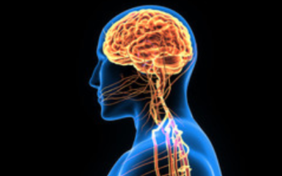 Physiology of Brain Injury
